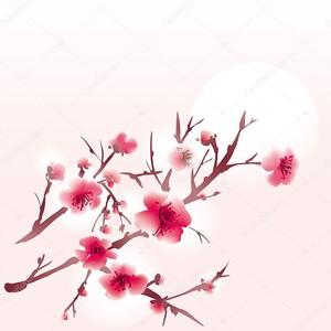 Сакура на розовом фоне