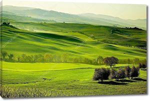 сельской местности, Сан Квирико Орчия, Тоскана, Италия