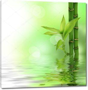 Дзэн-бамбук