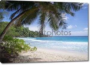 Остров мечты. Отдых и релаксация