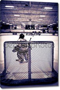 вратарь хоккея с шайбой