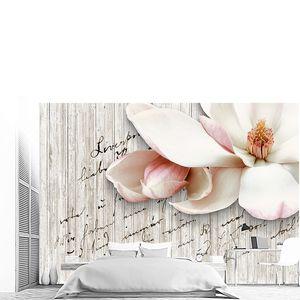 Цветок сакуры крупно