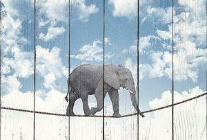 Слон на веревке