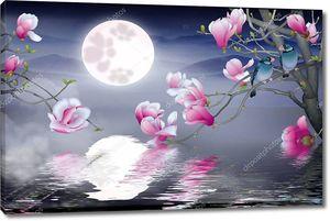 Полная Луна в ночном небе, отражение луны в воде