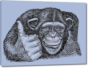 Шимпанзе рисования векторных