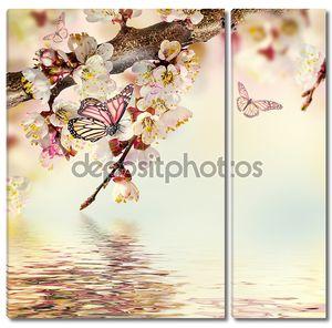 абрикосовые цветки с бабочками