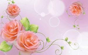 Большие бутоны розовых роз, зеленые листья