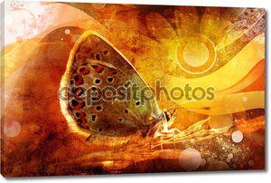 Бабочка на красивый цветной фон