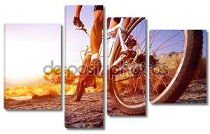 Человек велосипед Маутейн