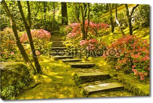 Деревенском лестницы