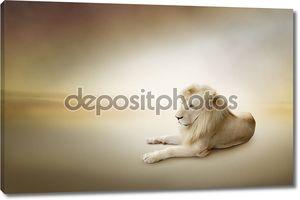 Роскошные фото Белый Лев