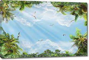 Небо с пальмами и птицами