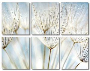 Абстрактный цветочный фон одуванчика