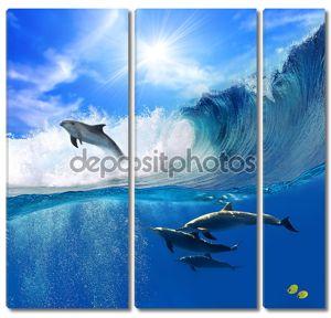 Семья Счастливые дельфины игривый один прыгает от взлома волна