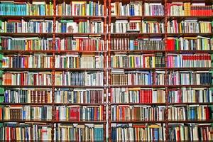 Книги шельфа