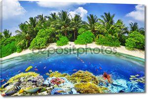 Тропический остров и подводный мир Мальдивских островов. Thoddo