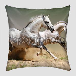 Красивых лошадей