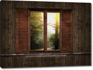 Лес за окном