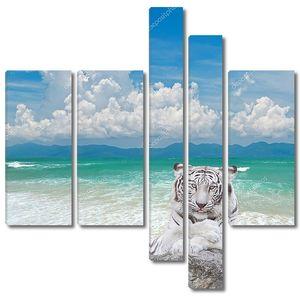 белый тигр