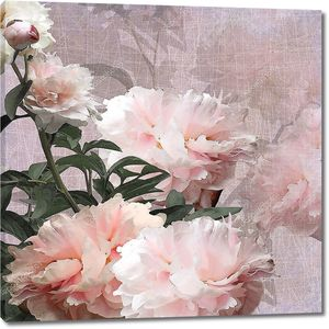 Цветочный дизайн пионы