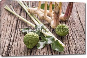 Травы и специи на деревянных досках