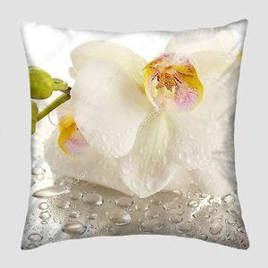 Красивая Орхидея белая с каплями