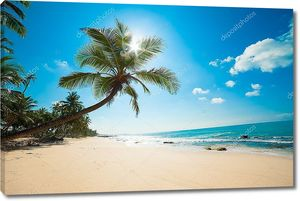 Нетронутый тропический пляж