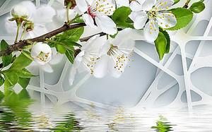 Ветка яблони над водой