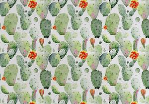 Узор из кактусов