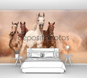 Лошади мчатся в пыли