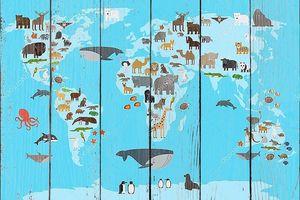 карта мира животных