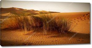 Марокканская  пустыня