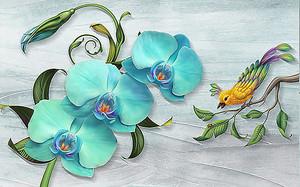 Бирюзовые орхидеи
