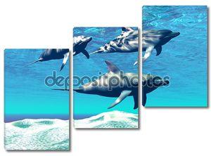 Дельфины у песчаного дна