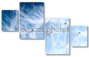 The Dandelion background. Macro photo of dandelion seeds over light blue sk
