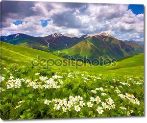 поля цветов цветение в горах.