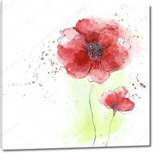 стилизованные цветы мака illustration.beautiful летние красные цветы, акварельная иллюстрация. цветочный фон. акварель цветочный бесшовный образец.