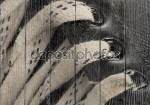 Кружева детали на паре изношенные хоккейных коньков
