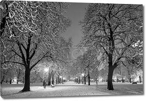Зимой снежный парк