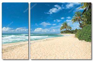 Нетронутый песчаный пляж с пальмы и лазурный океан в фонов