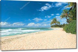 Нетронутый песчаный пляж с пальмами