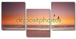 Фото пляж закат и чайки