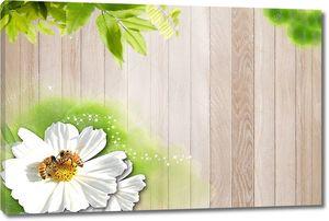Деревянные доски, большой белый цветок с двумя пчелами