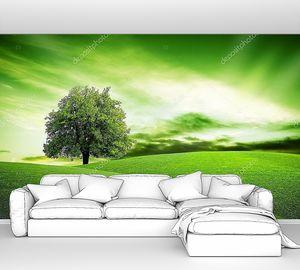 Эко Зеленая планета