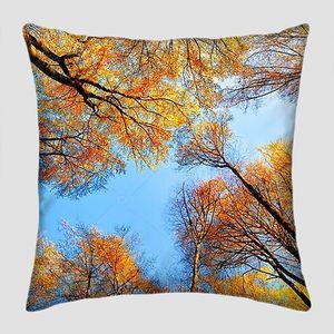 Осеннее солнце, сияющее золотыми деревьями, с красивым ярким небом, похожим на голубую дорожку в тенте