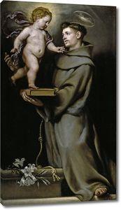 Коэльо Клаудио. Святой Антоний Падуанский