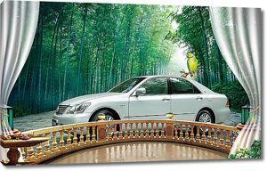 Авто с верандой на фоне леса