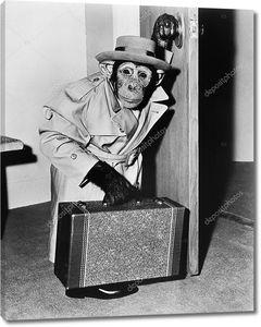 Шимпанзе в пальто и шляпе с чемоданом