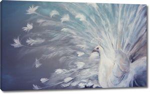 Волшебный белый павлин