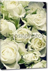 Фон из белых роз с зеленым l